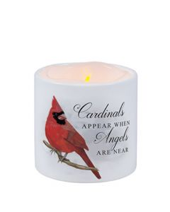Carson Home Accents LED Candle - Cardinals Appear When Angels are Near