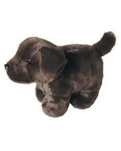 Carstens Chocolate Lab Plush Coin Bank
