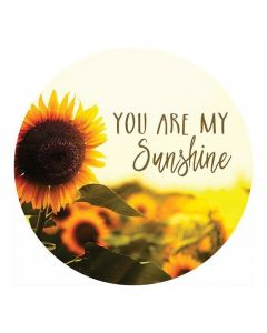 Carson Home Accents You are Sunshine Car Coaster
