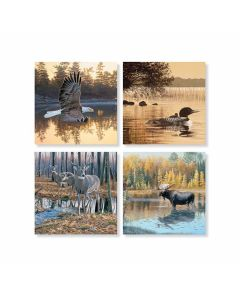 Carson Home Accents Wildlife in Water Coaster Set