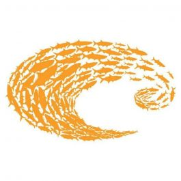 Costa C Schoolin ORG Decal-L